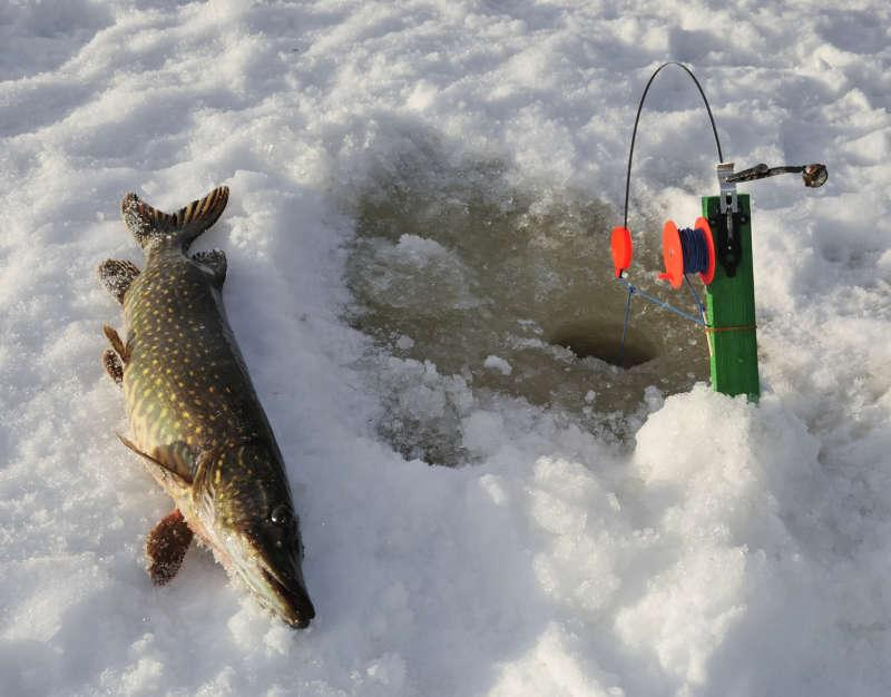 Как ловить щуку зимой