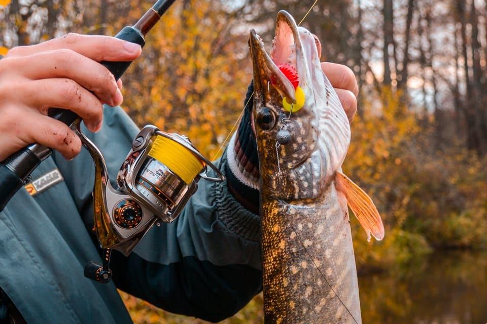 Рыбачим осенью