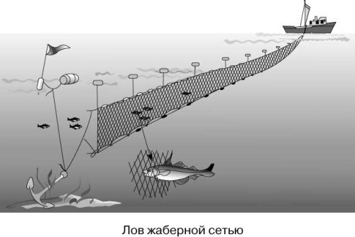 Объячеивающие (жаберные) сети