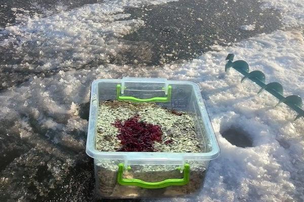 Прикормка для подлещика зимой