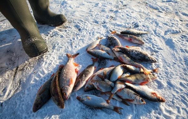 Зимняя ловля рыбы