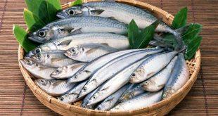 Основные признаки свежести рыбы