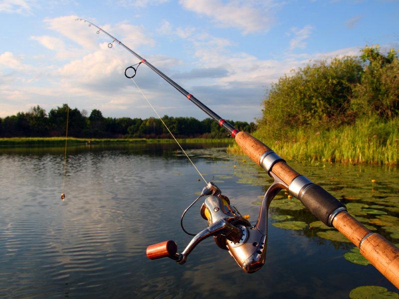 Как выбрать спиннинг для удачной рыбалки