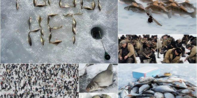 Что делать, когда рыба не клюёт?