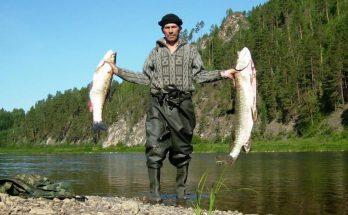 Рыбалка круглый год на реке Луга