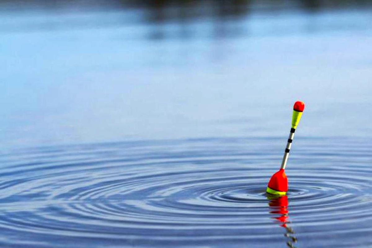 пошли фото рыбалка на поплавок всей