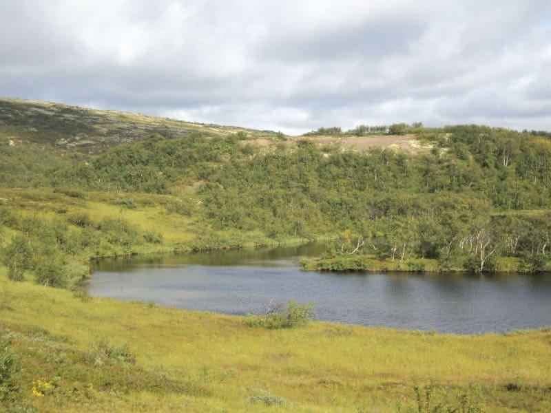 Река Белоусиха
