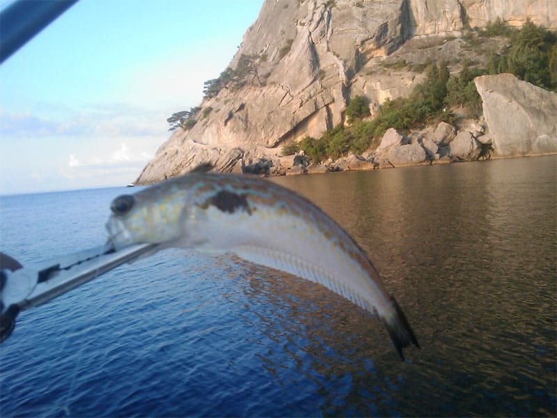 Рыбное место Крым