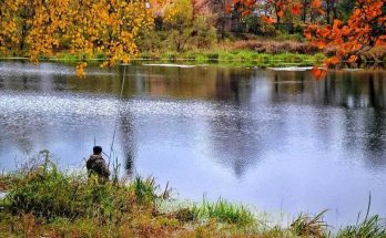 В чем отличие осенней рыбалки на спиннинг
