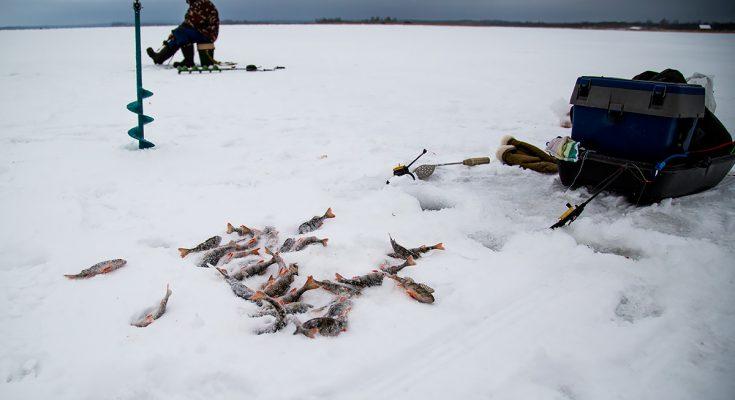 Ловля рыбы в зимних условиях