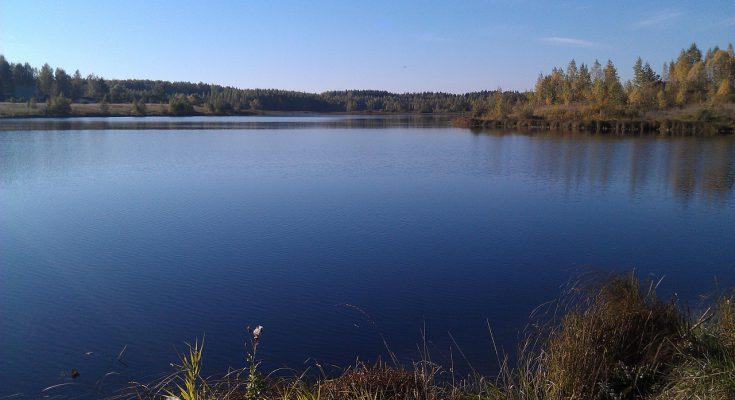 Отличная рыбалка на озере Никольском на Калужском шоссе