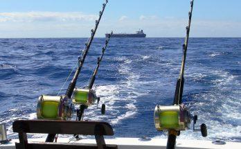 Виды рыбной ловли